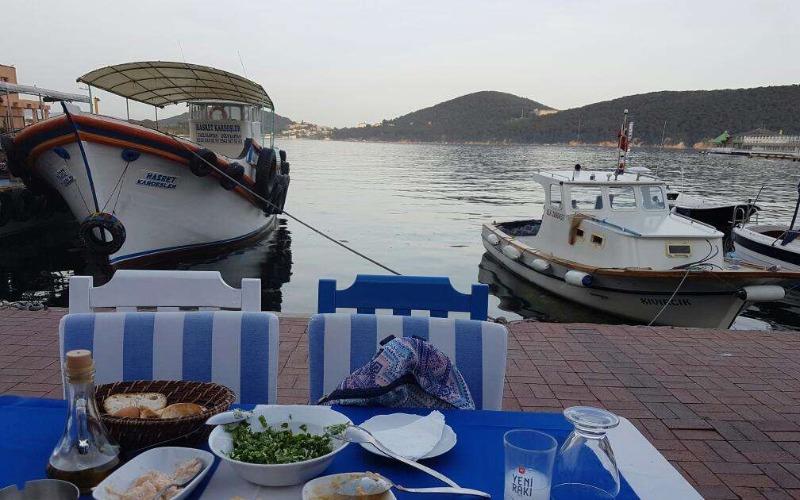 fincan restaurant burgazada